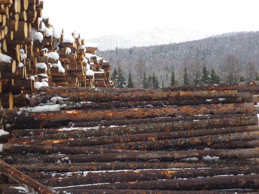 Timber Resource Group Timber Resource Group